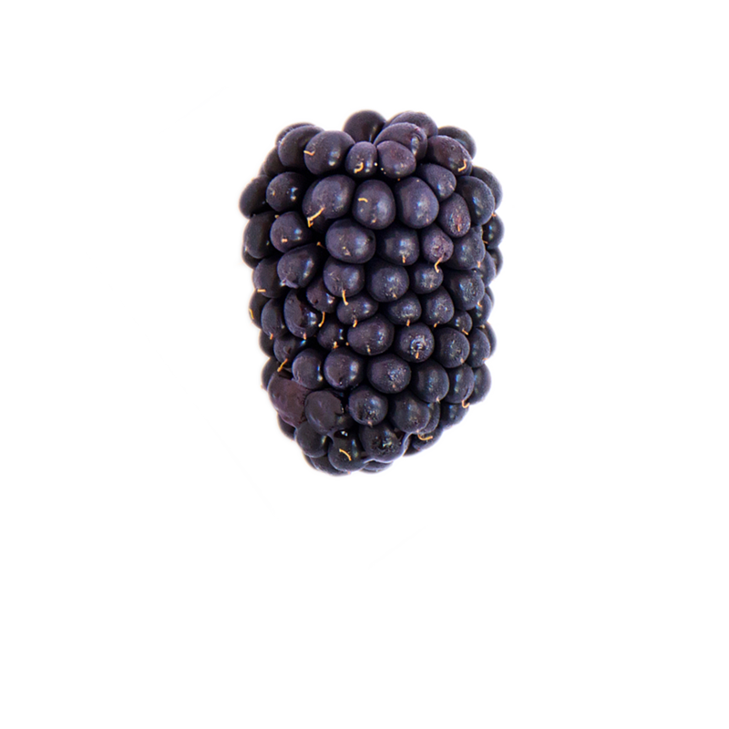 A ripe blackberry